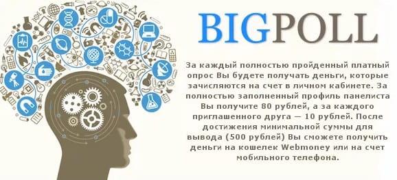 Надежный и платящий опросник для заработка Bigpoll